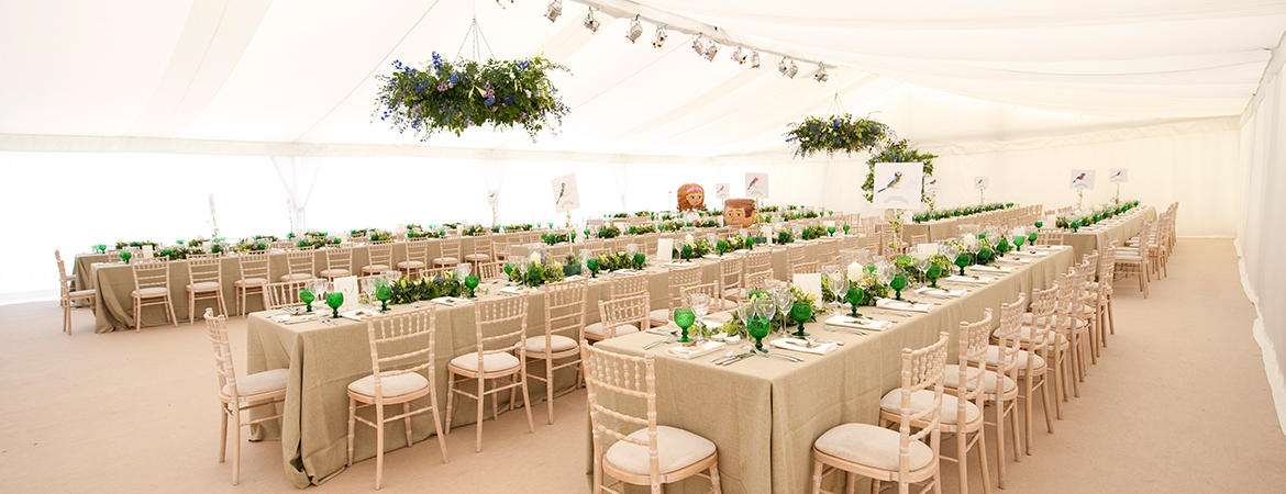 D D Marquees Event Furniture Hire - Banqueting chair hire